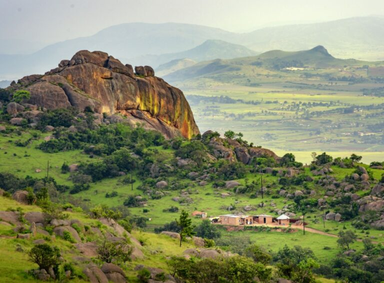 Veganism in Southern Africa: How climate change is challenging Eswatini's meat-eating culture