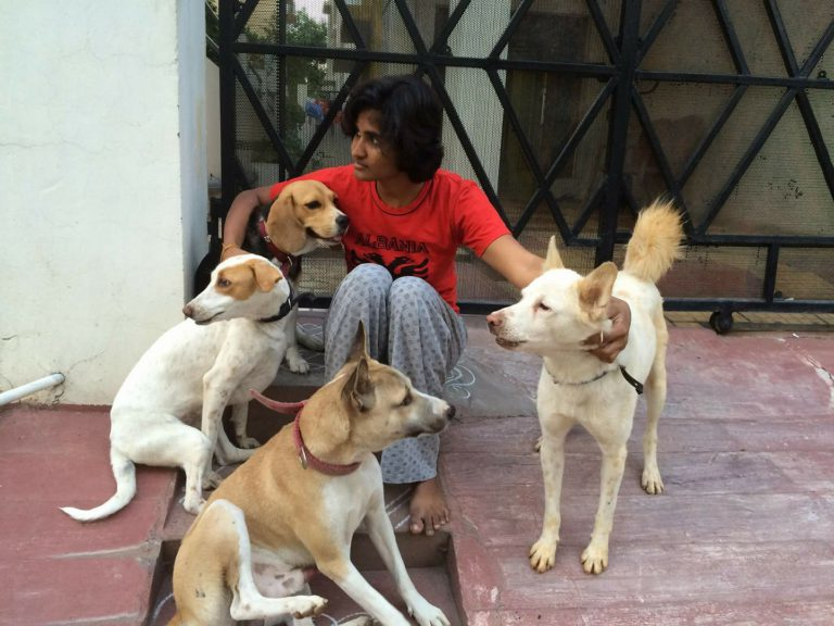 Scoobies Pet Services: Transporting Hyderabad's stray animals via cabs