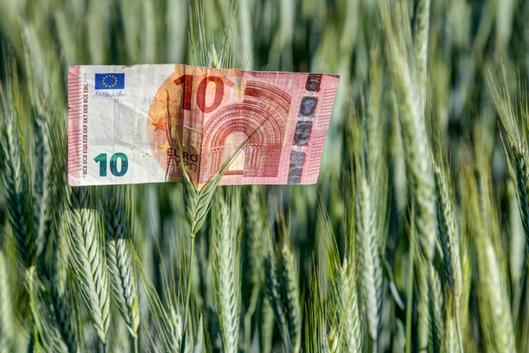 Study reveals striking results when adding climate costs to food prices
