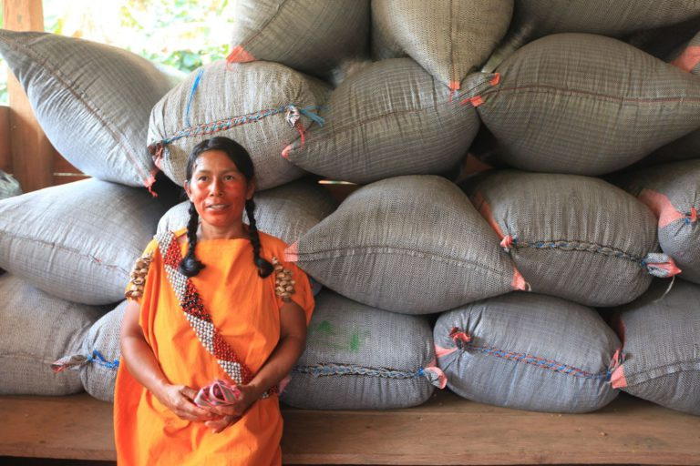 Easy Jose: Sustainable coffee supporting indigenous communities and the Amazon
