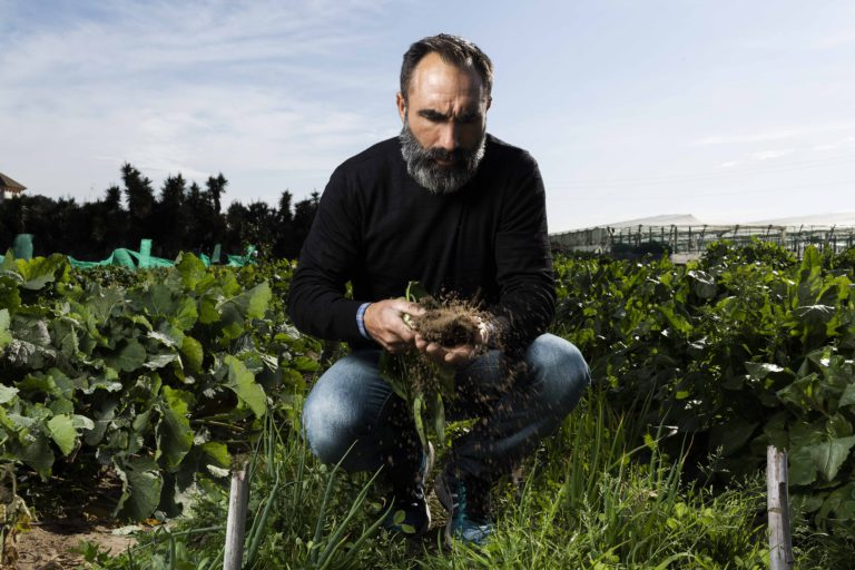 The farmer who irrigates his crops with salty water