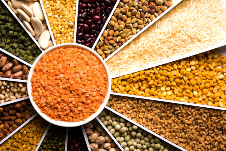 Pulse power: the key role of pulses in a plant-based diet